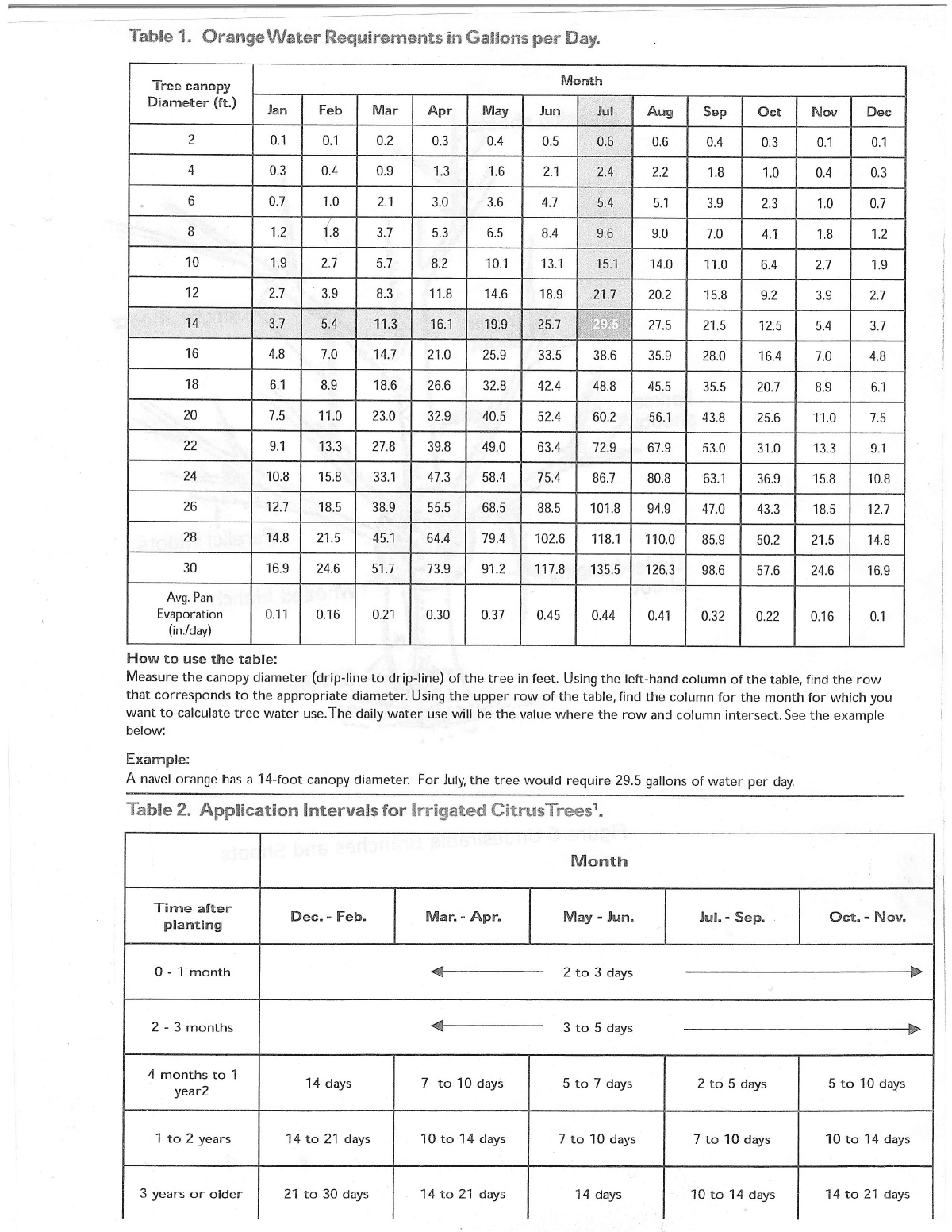 citrus watering schedule for the desert